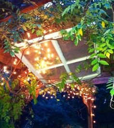 old pictures outdoor christmas lights   ... Christmas Decor Recipe, Childhood Memories, Christmas Lights, Outdoor