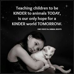 Teach them young, the next generation of how animals are treated will be up to them. #adoptdontshop #rescue