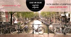 Consigue un *Viaje a Amsterdam* con Madresfera y conviertete en  Embajador del Color de Bugaboo #Embajadoresdelcolor #atodocolor @BugabooES @Madresfera