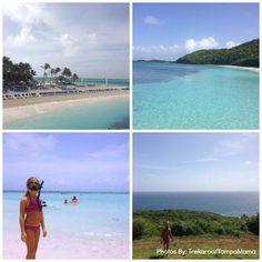 Island Life in Puerto Rico