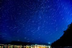 Starsky by Mengqiu Chen Natural World, Chen, Wildlife, Waves, Nature, Outdoor, Outdoors, Naturaleza, Ocean Waves