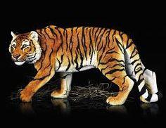 tijger mongool