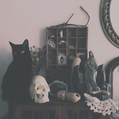 @Theewhitewitch Instagram...cats, marys, skulls, collectives, vintage...im so confused o.o) yay