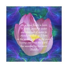 Shop Buddha quote Lotus flower Canvas Print created by Motivators. Buddha Lotus, Buddha Zen, Buddha Quote, Lotus Flower Quote, Flower Quotes, Buddhist Words, Buddha Canvas, Overcome The World, Pink Lotus