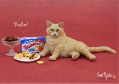 Miniature 1:12 Cat sculpture - BonBon by  Kerri Pajutee