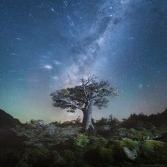 Patagonia magic