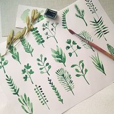 Plant and greenery watercolor — nadyakrupina (Надежда) on Instagram