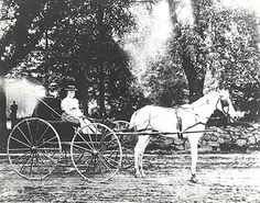 A visiting nurse from the Visiting Nurse Service of New York makes her rounds with horse and carriage in the Bronx in 1906.http://www.vnsny.org/about-us/history/