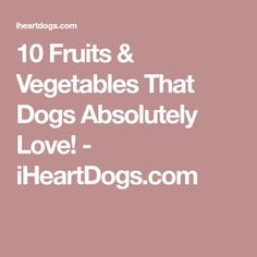 10 Fruits & Vegetables That Dogs Absolutely Love! - iHeartDogs.com