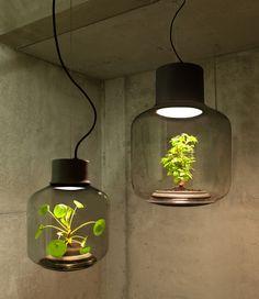 Mygdal Plantlight Brings Life Into Windowless Spaces