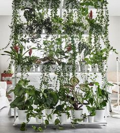 Love this plant divider | 10 Decorating Tips from the New 2018 IKEA Catalogue | Poppytalk