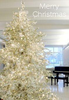 (via ❄ White Christmas Dreams ❄)