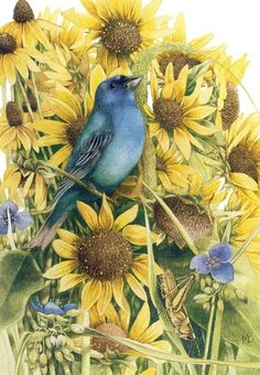 Blue bird & yellow flowers by Marjolein Bastin | ♥ yellow♥blue/gold…)