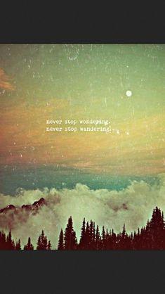 wonder. wander. repeat.