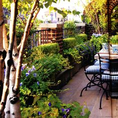 Like the shrubbery pots...would look great my patio against the brick wall