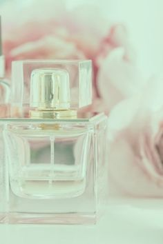 For the uninitiated, shopping for natural perfumes can be overwhelming. You used to spend hours trying on every single perfume in the perfume aisle of department stores and you knew the brands and your favorite scents. But with natural perfume where do you start? What criteria is most important? Ingredients? Formulations? Certifications? Sustainability? CLICK TO READ MORE Clean Perfume, 5 Things, Sustainability, Perfume Bottles, Cleaning, Natural, Beauty, Shopping, Perfume Bottle