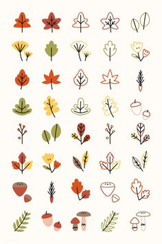 Download premium vector of Colorful leaves drawing collection vector 893107