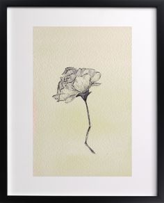 Click to see 'Botanical Study I' on Minted.com
