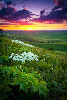 ✮ Steptoe Butte in the Palouse region of eastern Washington state