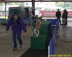 Valley View Canine. Dog Training CLasses (+agility) in Gresham