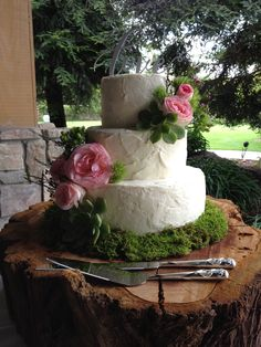 Paige's wedding cake