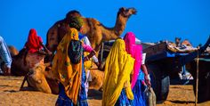 Rajasthani women in colorful saris at the Pushkar Fair (camel fair), Pushkar, Rajasthan, India. Get all the information as per your desire from Travel N Tours India (http://www.travelntoursindia.co.uk) India Private Tour Operator, tailored to suit your travel requirements!