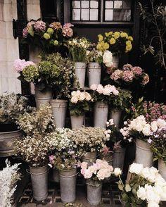 Jakie zdjęcia na Instagramie lubicie oglądać najbardziej? Dajcie znać w komentarzach ✨#gofollow #creativeagency #aesthetic #inspiration #flowers #london