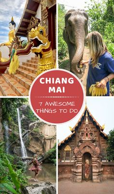 7 Awesome Things To Do in Chiang Mai! Headed to Thailand? Make sure you visit the northern city of Chiang Mai. Visit beautiful temples bathe elephants swim under waterfalls eat delicious Khao Soi Gai and chat with monks! By Wandering Wheatleys ( Thailand Destinations, Thailand Vacation, Thailand Travel Guide, Visit Thailand, Asia Travel, Backpacking Thailand, Thailand Honeymoon, Bangkok Trip, Cambodia Travel