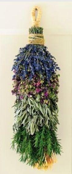 Ramo de plantas medicinales secando en herbolario.