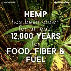 Lets make Hemp a part of our everyday lives again!