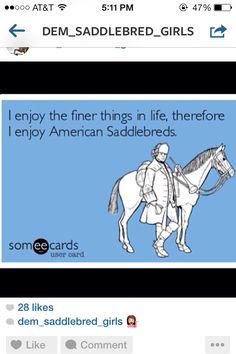 Saddleseat..