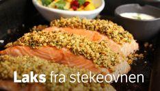 Laks med nøtteskorpe og yoghurtdressing – NRK Mat – Oppskrifter og inspirasjon Tuna, Fish, Drink, Meat, Ethnic Recipes, Beverage, Pisces, Drinking, Atlantic Bluefin Tuna