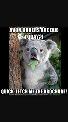 not today but soon! http://www.avon.ca/shop/en/avon-ca/brochure-list?BP=0j%2bfQCNMpx8%3d