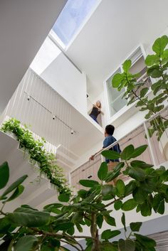 Multiple levels and open living spaces characterize this detached house in Singapore as an example for contemporary interior design. Modern living just a guess Singapore Architecture, Interior Architecture, Interior Design, Skylight Design, D Lab, Co Housing, Casa Patio, Narrow House, Open House