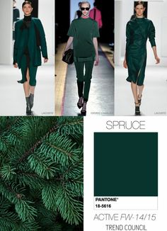 herbsttyp pantone trendfarben herbst winter 2014 2015