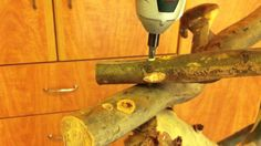how to build a parrot stand - I'll use smaller branches
