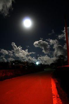 Island moonlit night