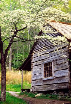 Love these beautiful historic cabins in the Smokies