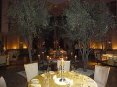 amanjena moroccan restaurant at night Indoor Olive Tree, Moroccan Restaurant, Table Decorations, Night, Home Decor, Decoration Home, Room Decor, Interior Design, Home Interiors