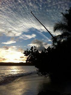 The pelican above... @ Palmas del Mar, Humacao, Puerto Rico