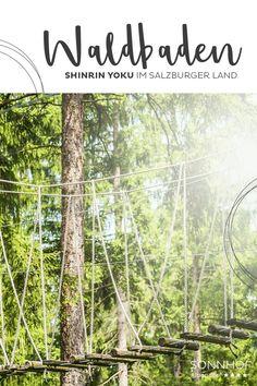 Wer den Wald vor lauter Bäumen sucht tut etwas für seine Gesundheit. Der Wald tut uns gut, weil er einfach unser evolutionäres Zuhause ist. Gleich beim nächsten Urlaub im Salzburger Land ein Waldbad nehmen, ihr fühlt euch danach besser - Versprochen! #sonnhofalpendorf #alpendorf #salzburgerland #visitaustria #waldbaden #shinrinyoku #wald #gesundheit #therapie #selbsterfahrungstripp Der Ludwig, Bad Gastein, Shinrin Yoku, Healthy Life, Outdoor Structures, Plants, Blog, Trips, Recovery
