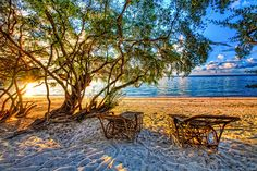 Sunrise at Shark Bay by Peter Apflauer, via Flickr