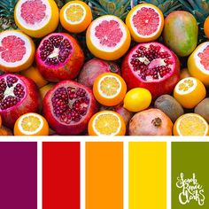 Bright citrus colors // Summer Color Palettes // Click for more color schemes, mood boards and color combinations inspired by Summer at https://sarahrenaeclark.com #color #colorscheme #colorpalette