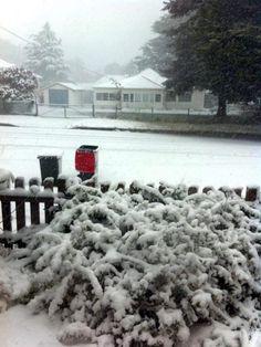 Snowfall in Blackheath Oct 12th 2012