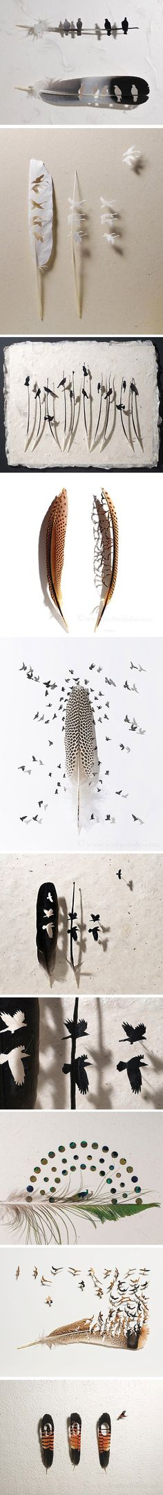 Feather Art par Chris Maynard - Journal du Design