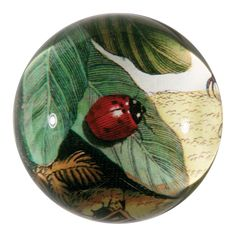 John Derian Company Inc — Ladybug