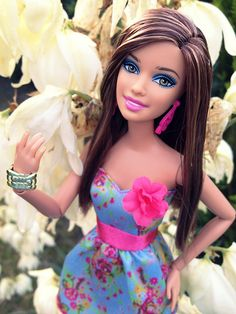 Teresa Fashionista Barbie Beautiful Barbie Fashionista
