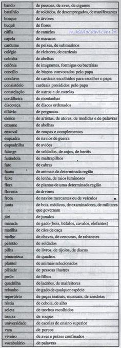 Exemplos de substantivos coletivos.
