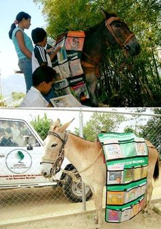 Did you know? The Donkey Library in Ethiopia brings books to schoolkids in remote villages. So far they have reached more than 2400 children in 14 villages. What a fantastic project. - http://ift.tt/1HQJd81