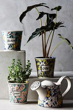 Artist-of-all-trades Molly Hatch is back with these beautiful patterned in-door…